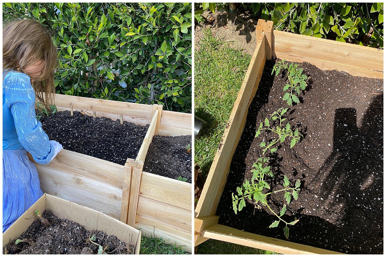 gardening planter box