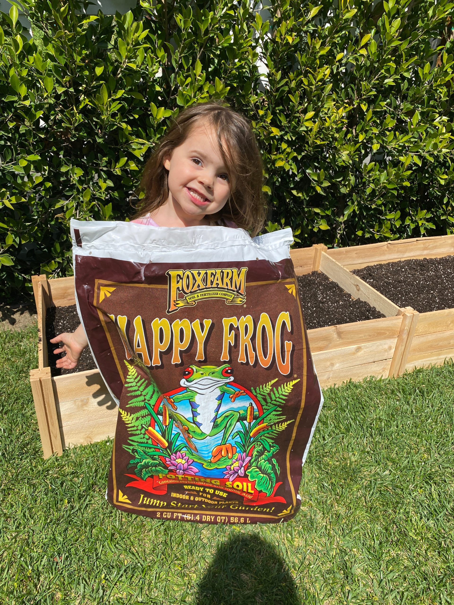happy frog gardening