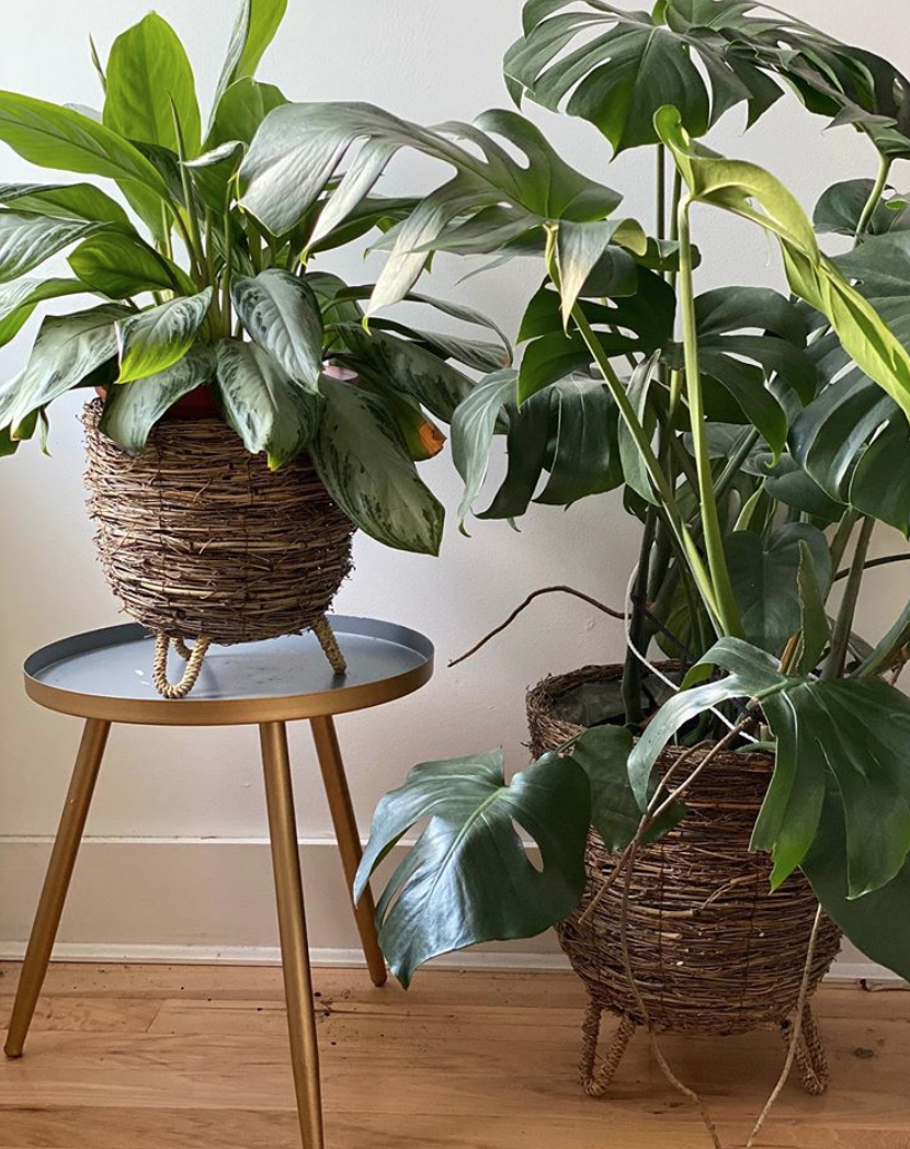 the fond home baskets