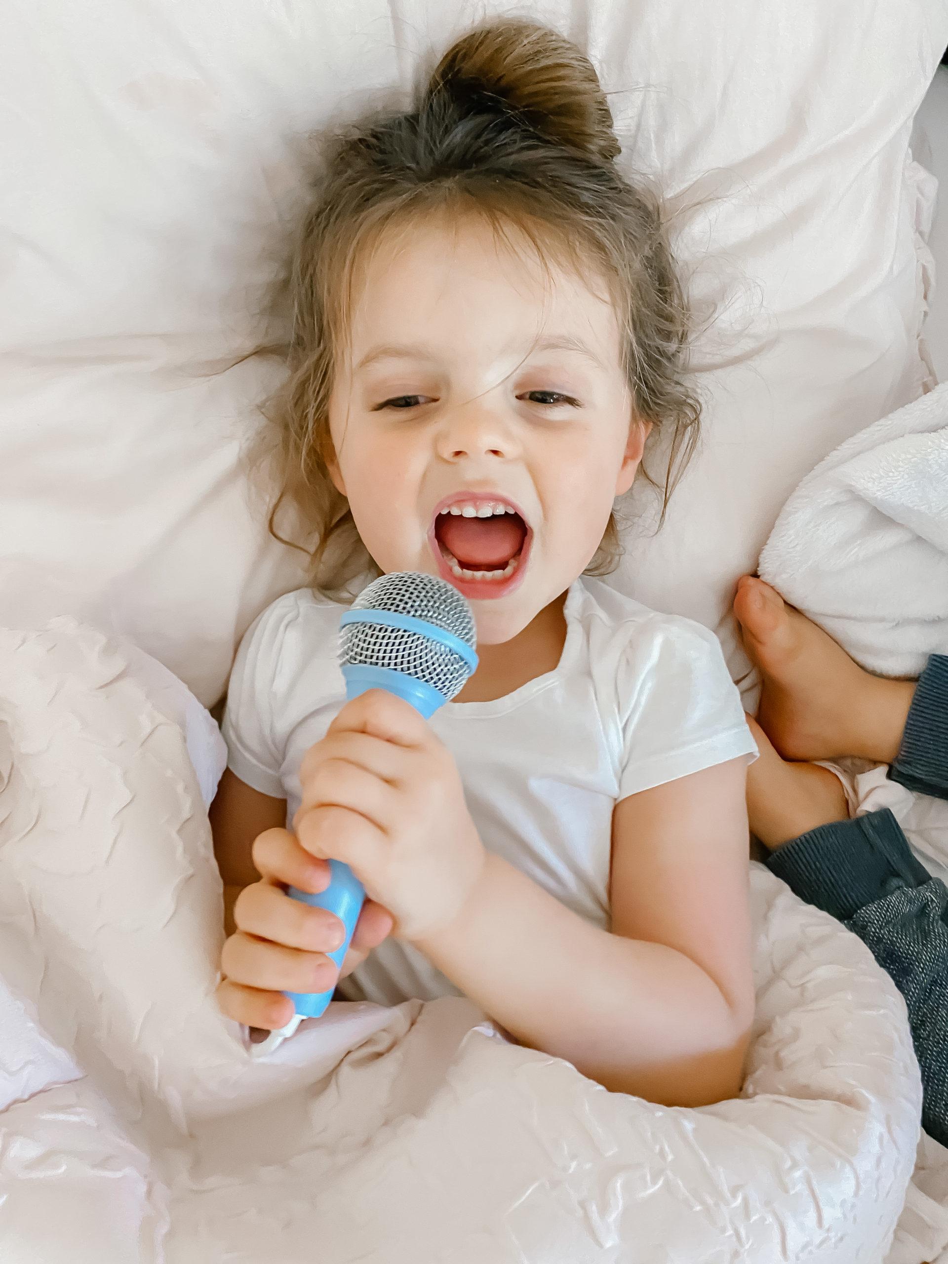 fun toys - molly karaoke microphone